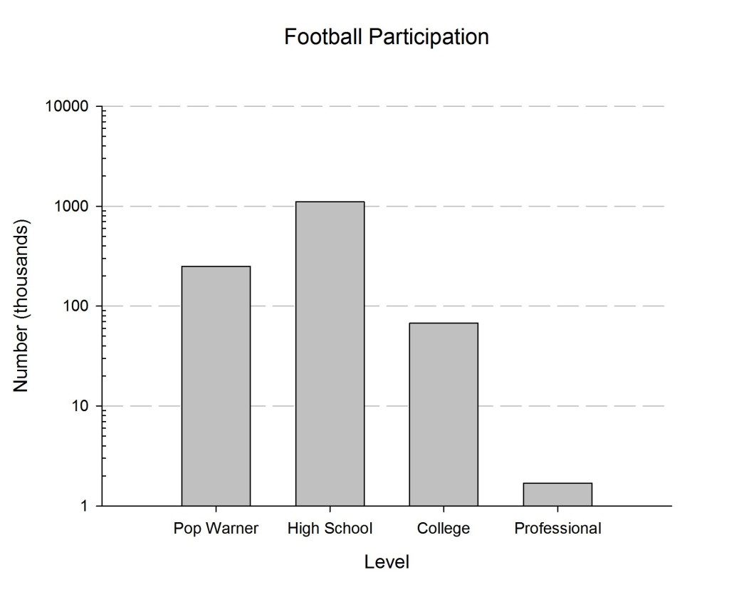 Number of Individuals Participating in Various Levels of Football Compettion