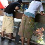 High Fashion   http://q1065.fm/files/2013/06/Baggy-Pants1.jpg