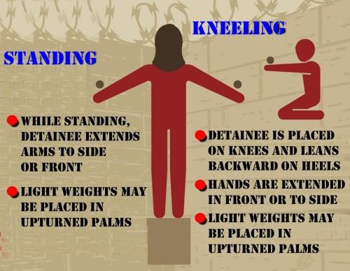Figure 9: Stress Positions (Standing & Kneeling)