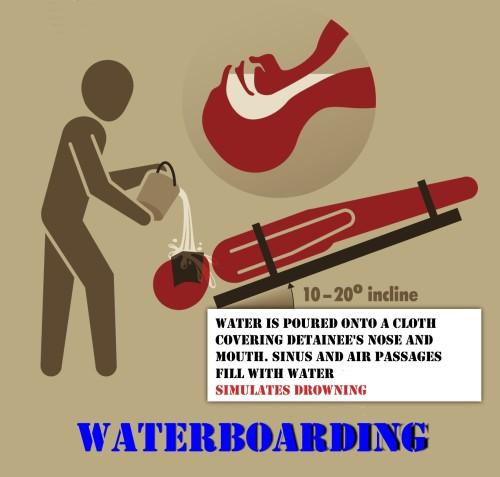 Figure 11: Waterboarding