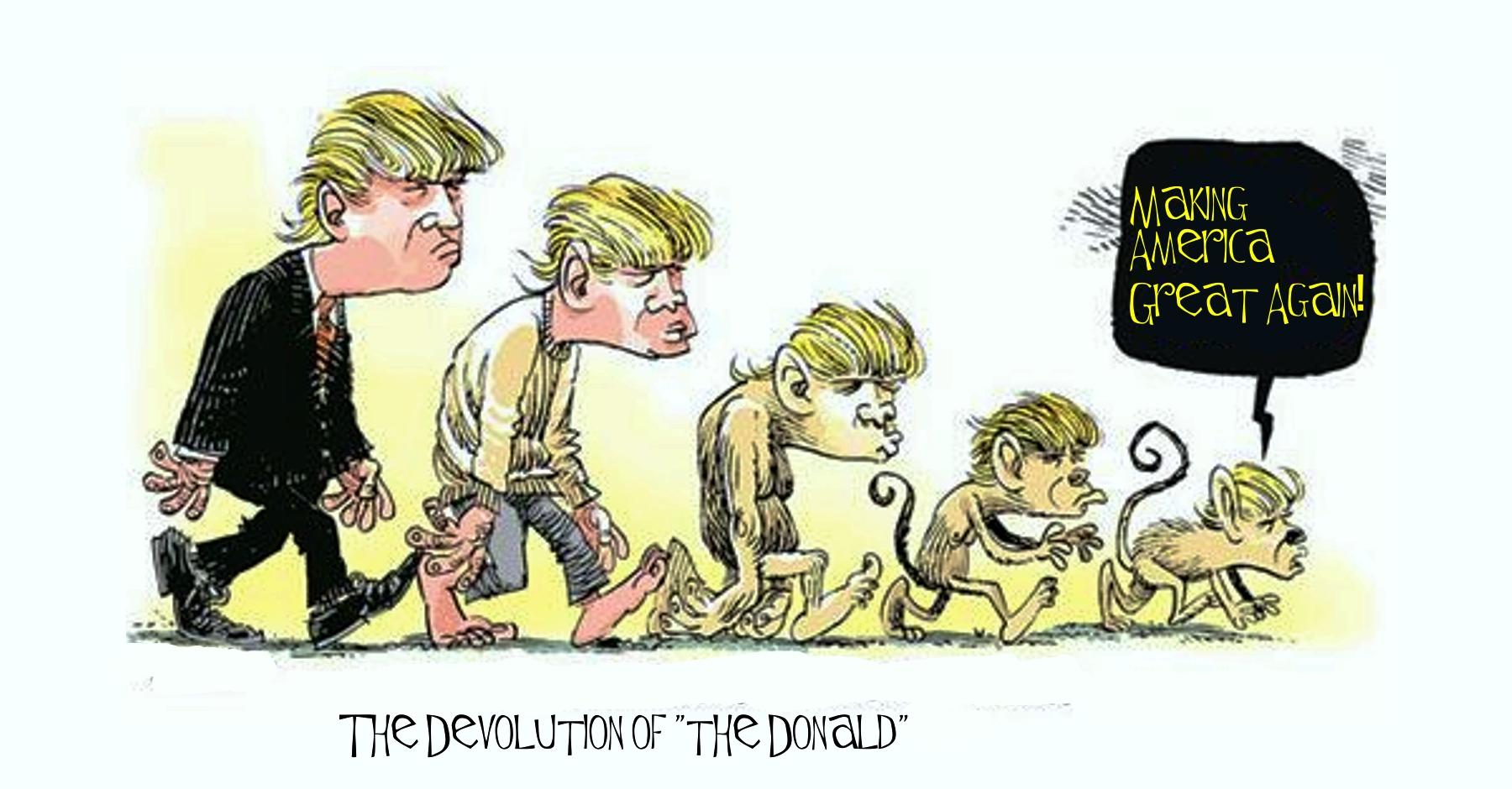 Trump for President