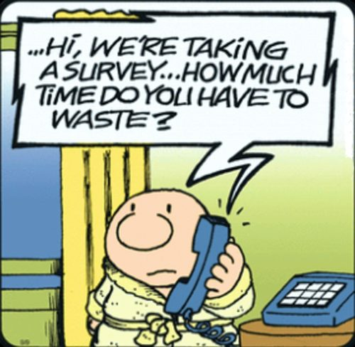 No More Surveys or Stupid, Uninformed Reviews, Please!